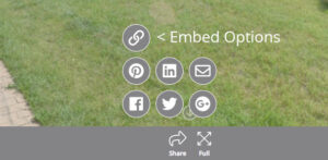 Embed Icon Location